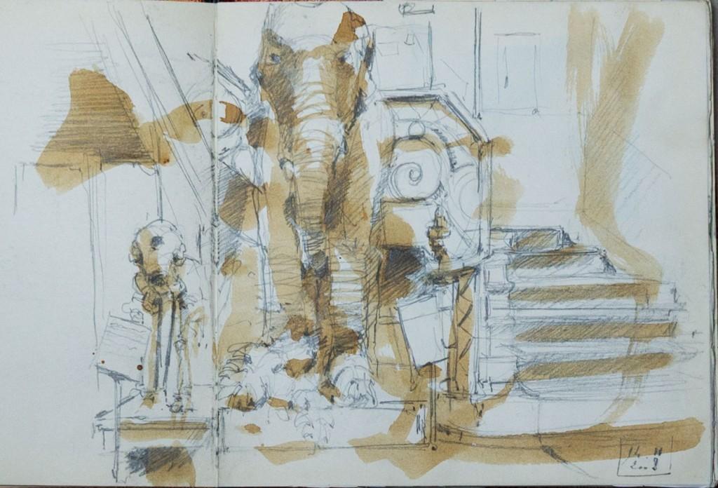 Muséum/ café, crayon